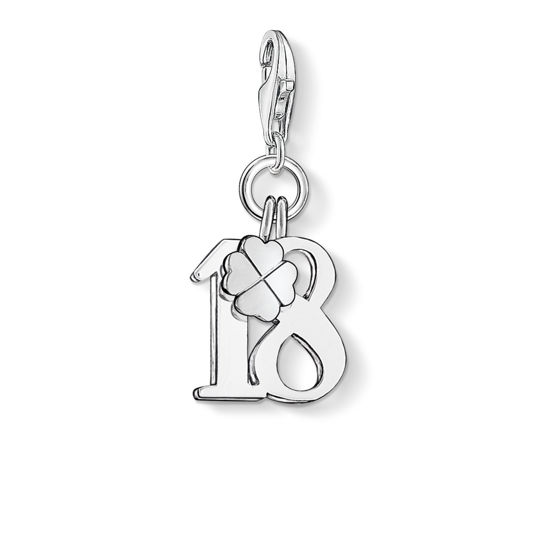 Picture of Lucky number 18 Charm
