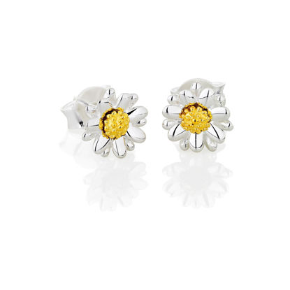 Picture of Bellis Daisy Stud Earrings 7mm