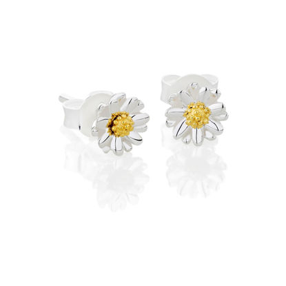 Picture of Bellis Daisy Stud Earrings 6mm