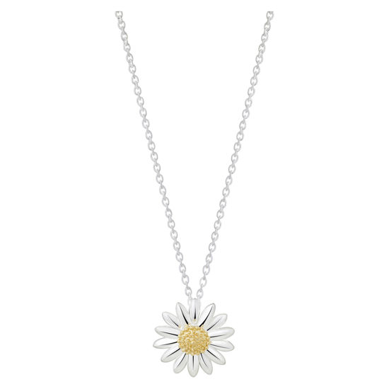 Picture of English Daisy Necklace in Silver 15mm