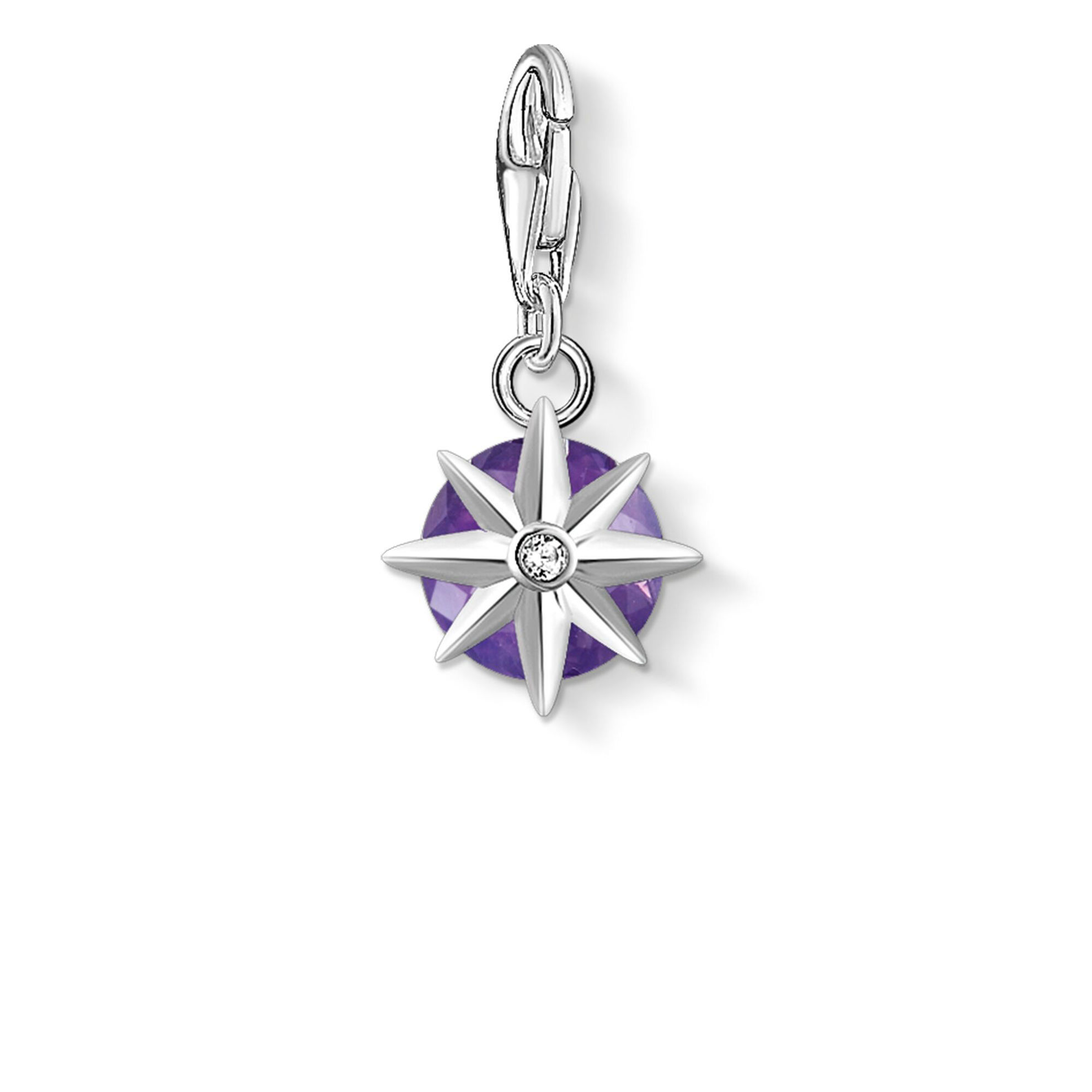 Picture of Amethyst Birthstone Charm