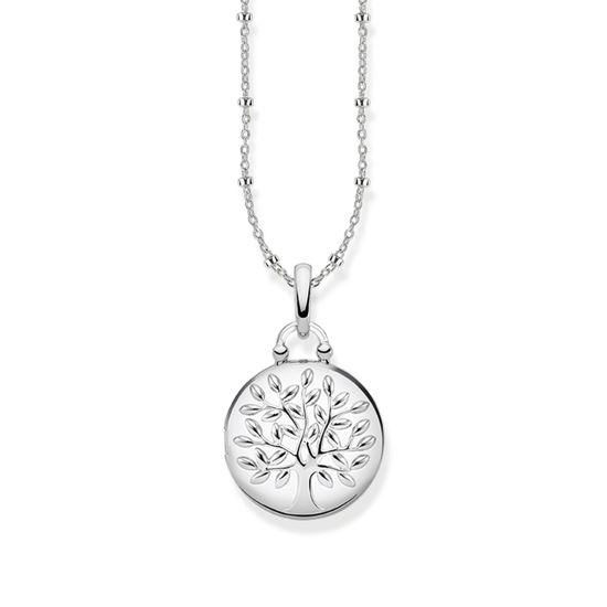 Picture of Tree of Life Locket