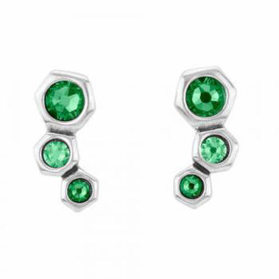 Picture of Green Crystal Earrings - No Honey